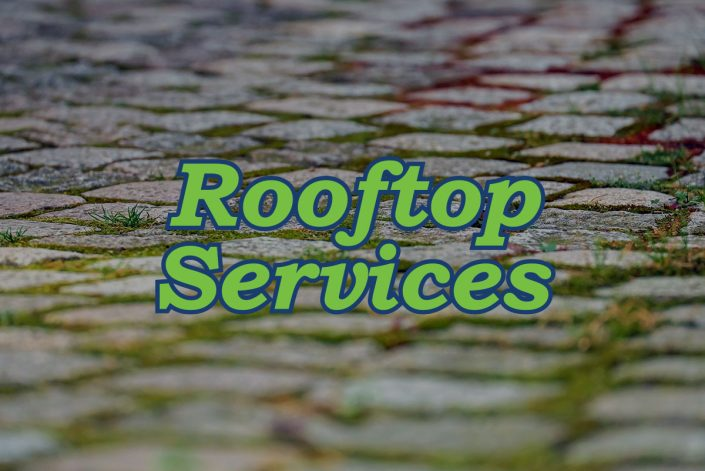 Rooftop Services logo on mossy cobblestone roof